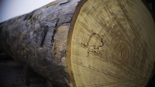 Eikenhouten planken voor de op maat gemaakte deuren van Cottageworld